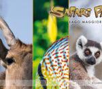 Volandia e Safari Park insieme per l'estate 2021